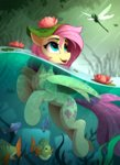 fish fluttershy highres swimming water yakovlev-vad