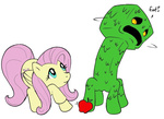 artist_unknown creeper crossover fluttershy minecraft spacemantis