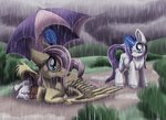 fluttershy inuhoshi-to-darkpen rain rarity umbrella