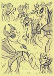 highres ocellus pharynx rossmaniteanzu thorax traditional_art