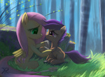 bandage fluttershy raikoh14 scootaffection scootaloo