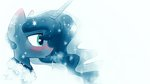 darkflame75 princess_luna winter