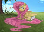 angel bird flowers fluttershy grass highres rainbow_dash sydneyitssydneyyo tree