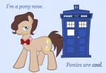 artist_unknown doctor_who ponified tardis time_turner