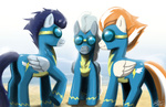 johnjoseco soarin wonderbolts
