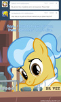 adiwan ask askthevetpony pet_rock vet_pony