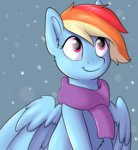dbleki rainbow_dash scarf snow snowing winter