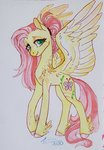 fat-bot fluttershy highres redesign traditional_art