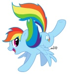 empty-10 rainbow_dash