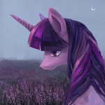 highres ilanta twilight_sparkle