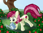 background_ponies cocolli flowers gardening rose rose_(flower) tree watering_can