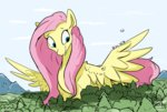 big bird fluttershy forest taurson trees