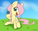 butterfly empyu filly fluttershy