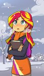 baekgup book sunset_shimmer winter