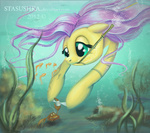 bandage bubble crab fish fluttershy i_shall_not_use_my_hooves_as_hands stasushka swimming