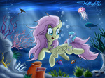coral fish fluttershy jellyfish seaponies swimming underwater willisninety-six