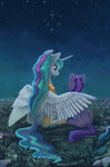 highres maytee nighttime princess_celestia stars twilight_sparkle
