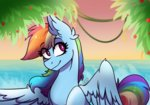beach rainbow_dash vale-bandicoot96