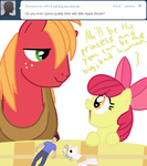 apple_bloom ask askbigmcintosh big_macintosh humans plushie princess_celestia toy txlegionnaire