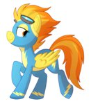 goggles spitfire thepossumface uniform wonderbolts