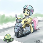 fluttershy giantmosquito helmet moped tortoise vehicle
