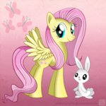 angel fluttershy swanlullaby
