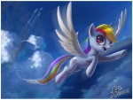 14-bis rainbow_dash wonderbolts