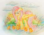 duck fluttershy loveless-nights rain traditional_art