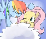 cloud flutterdash fluttershy rainbow_dash shipping yubi