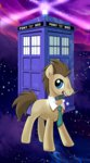 kairean sonic_screwdriver tardis time_turner