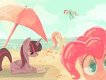 applejack beach book dreishzu fluttershy pinkie_pie princess_twilight rainbow_dash twilight_sparkle umbrella