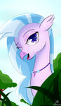 absurdres dashy21 highres silverstream