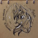 mychelle shining_armor traditional_art
