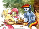 bird fluttershy kenket nest rainbow_dash sophiecabra tree