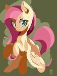 fluttershy highres tohupo