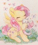 angel butterfly fluttershy highres kemari12011 traditional_art