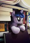 book book_fort buttercupbabyppg fort photo plushie toy twilight_sparkle