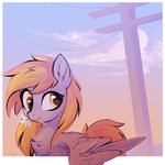 aureai derpy_hooves flowers highres