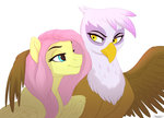 fluttershy gilda gildashy highres scorpion-89 shipping