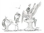 baroncoon bird bird_bath fluttershy pegasi_acting_like_birds rainbow_dash traditional_art