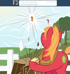 applejack apples ask askbigmcintosh big_macintosh hoof_wrestling sweet_apple_acres txlegionnaire