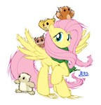 blue-paint-sea fluttershy hamster scarf transparent