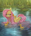 bird duck ducklings fluttershy highres selya_t water