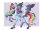 highres marbola rainbow_dash redesign
