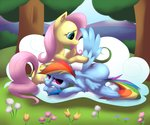 Post 67396, tags: cloud, flowers, fluttershy, poneebill, rainbow_dash, tears, rating:Safe, score:8, user:Geomancing