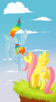 cartoonlion fluttershy rainbow_dash