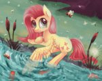 bees fish fluttershy highres mapony240 river water