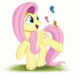 absurdres arcane-thunder butterfly fluttershy highres