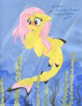 blushing fluttershy foxxy-arts highres merponies shark traditional_art underwater