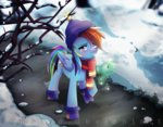 hat lumelya rainbow_dash scarf snow tank winter